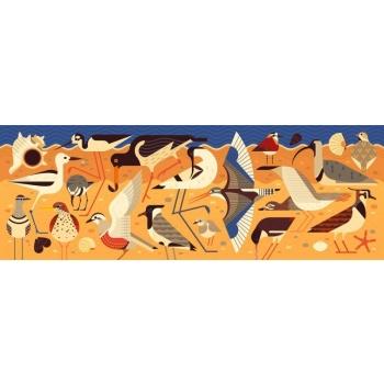 Puzzles gallery - Birds