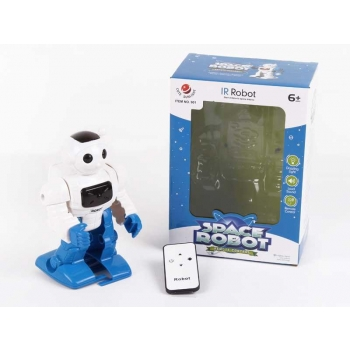 RC Walking Robot