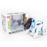 Interaktiivne robotkoer