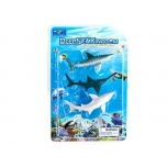 Set of aquatic animals shark
