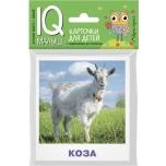 """IQ малыш. Карточки для детей """"Домашние Животные"""""""