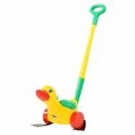 Ducky Polesie