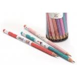 Kustutuskummiga puidust harilik pliiats